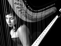Perth Wedding Harpist A