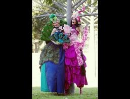 Flamenco And Peacock